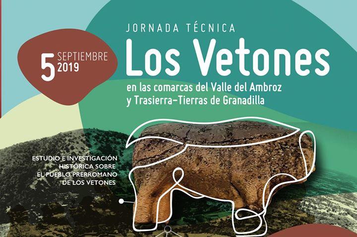 Jornada Técnica Los Vetones