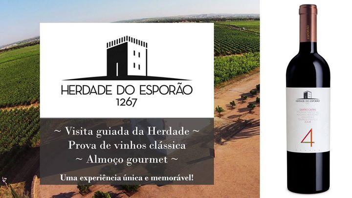 Passeio vinícola - Herdade dos Esporão