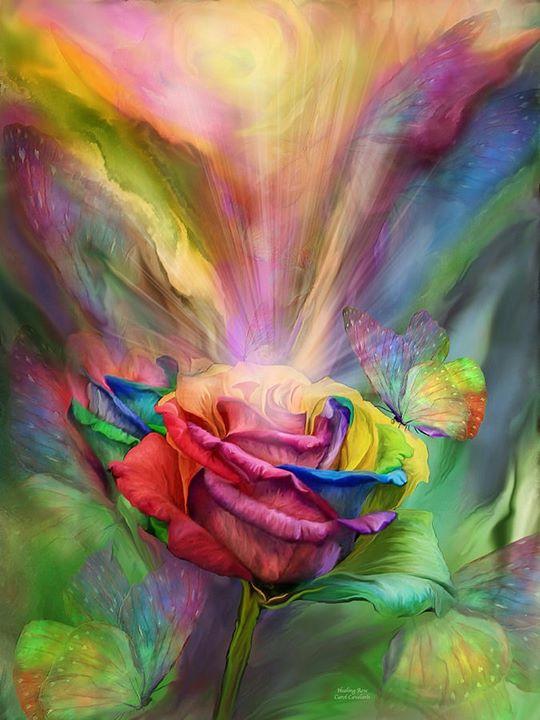 Curso Meditação das Rosas