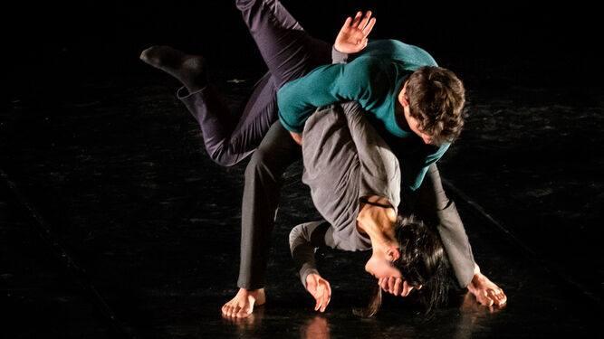 Programa Doble, Danza Contemporánea
