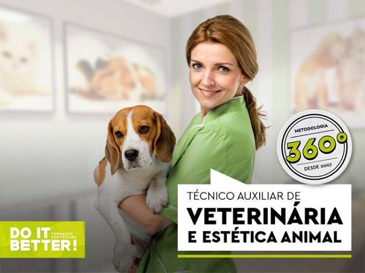 Curso de Técnico Auxiliar de Veterinária e Estética Animal
