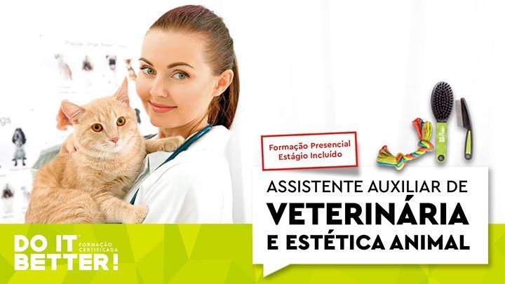 Auxiliar de Veterinária - Laboral