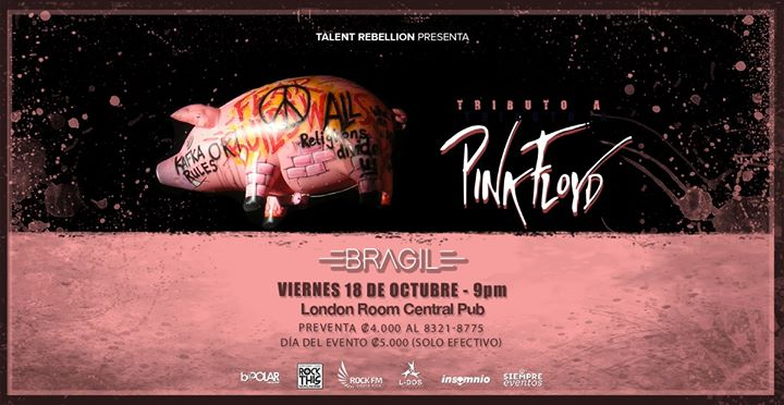 Tributo a Pink Floyd - Bragil