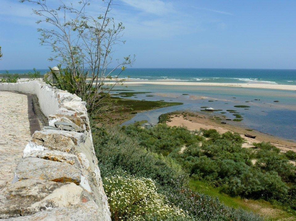 Dia Nacional de Limpeza de Praia