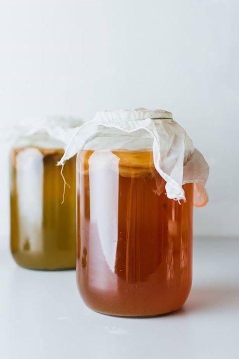 Workshop: Como preparar a sua própria kombucha aromatizada