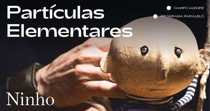Partículas Elementares ⁄ Ninho [FIMP 2019]