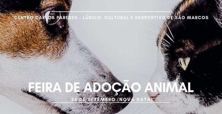 Feira de Adoção Animal | 28 de setembro (NOVA DATA)