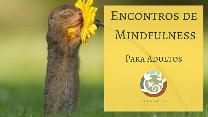Encontros de Mindfulness para Adultos