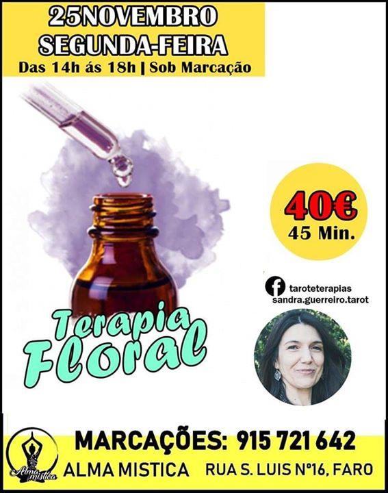 Terapia Floral com Sandra Guerreiro 25 Novembro
