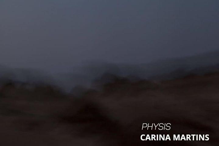 Inauguração da exposição Physis de Carina Martins