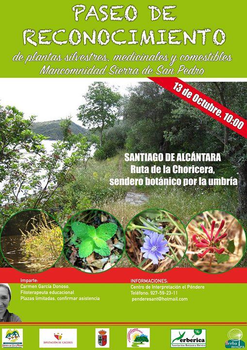Paseo de Reconocimiento de plantas en Santiago de Alcántara