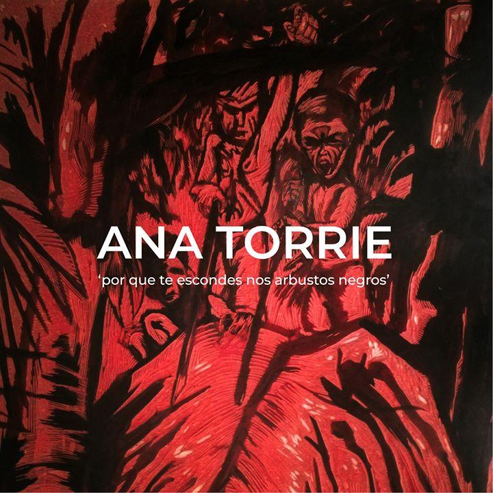 Exposição por que te escondes nos arbustos negros de Ana Torrie