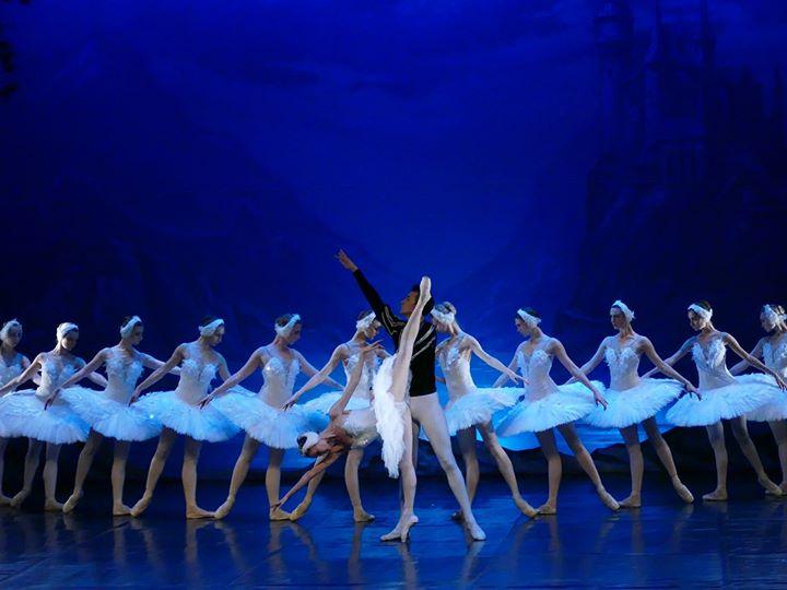 Esgotado - Lago dos Cisnes - Russian Classical Ballet