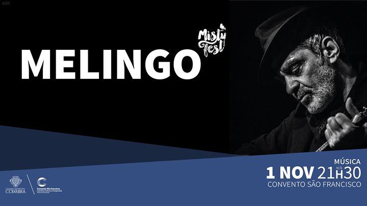 Melingo – Misty Fest