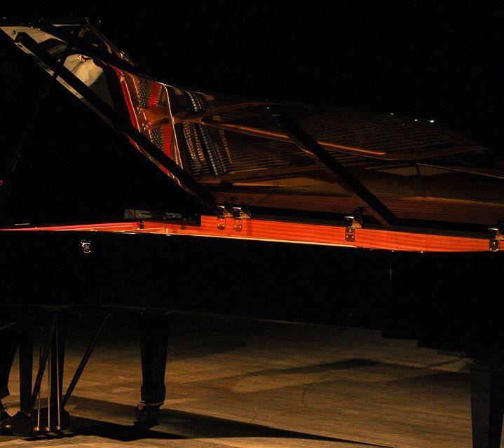 Recital de piano | Diana Botelho Vieira