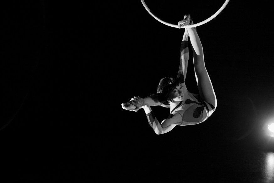 A arte do Novo Circo em novembro