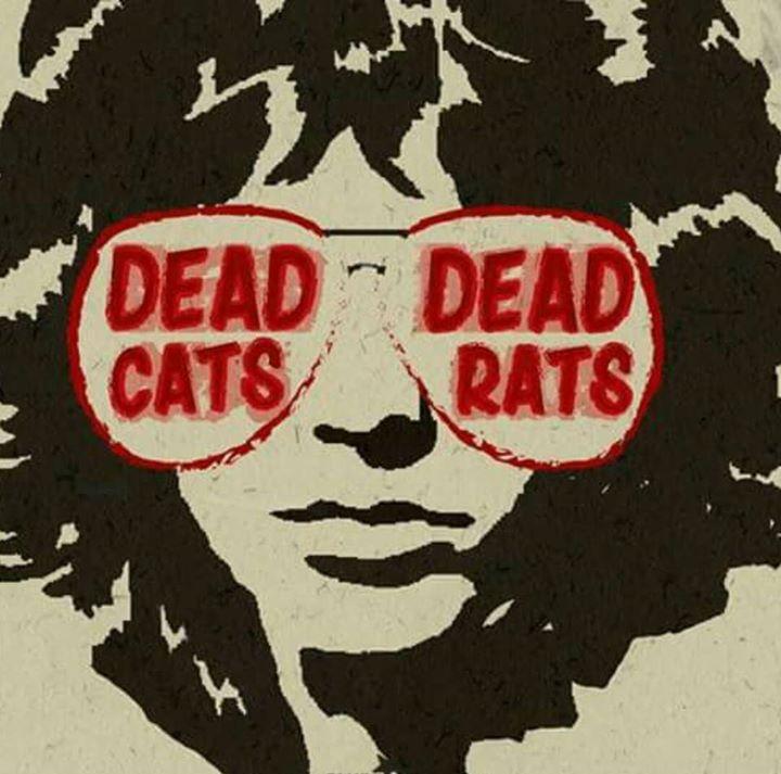 Dead Cats Dead Rats // The Doors Trip