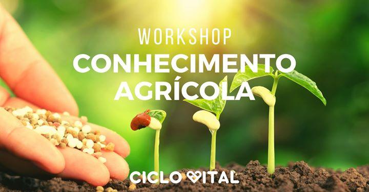 Workshop - Conhecimento Agrícola