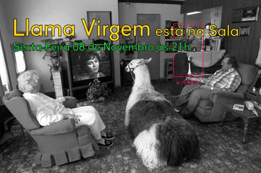 Llama Virgem - Concerto