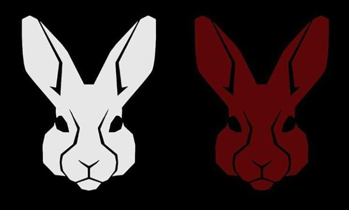 White Rabbit, Red Rabbit de Soleimanpour