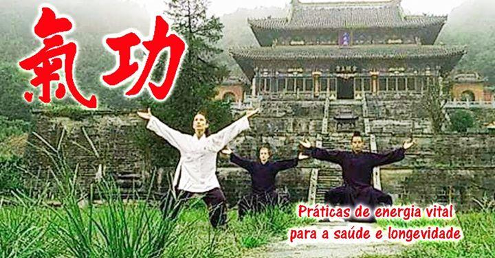 Qigong - Práticas de energia vital para a saúde e longevidade