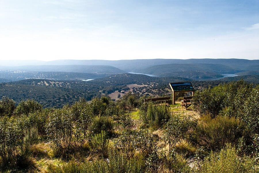 Ruta Senderista Cerro Tejonera