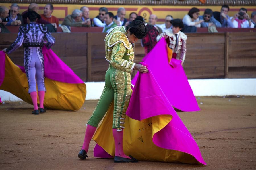 Feria del Toro de Olivenza