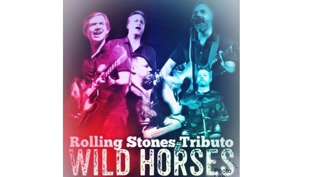 Ciclo ' a voz dos Outros' - WILD HORSES - TRIBUTO STONES