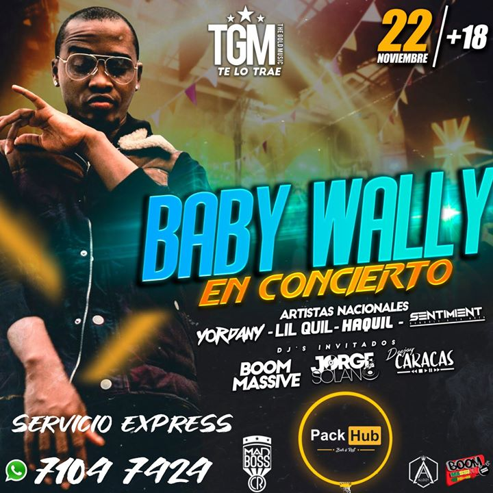 BABY WALLY Concierto Heredia PackHub