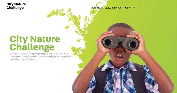 City Nature Challenge 2020 GAM Costa Rica