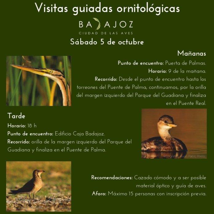 Visitas ornitológicas