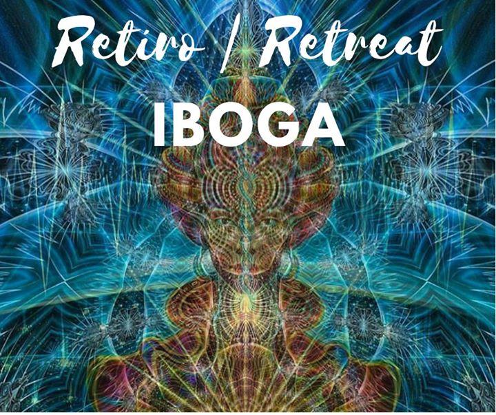 Retiro de Iboga - Planta Mestre Professora