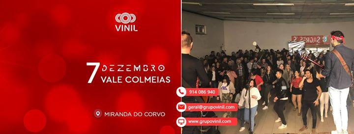 Grupo Vinil | Vale Colmeias
