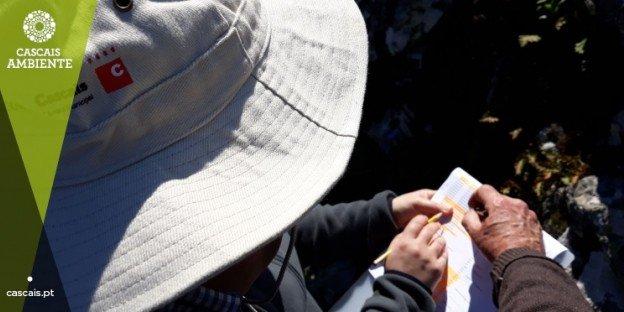 Monitorização Flora Área Ardida