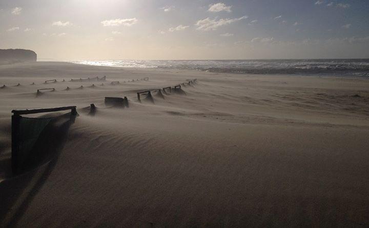 Limpeza de praia e convívio/ Beach clean-up and get-together
