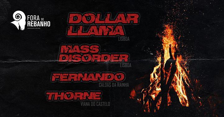 Dollar Llama / Mass Disorder / Fernando / Thorne