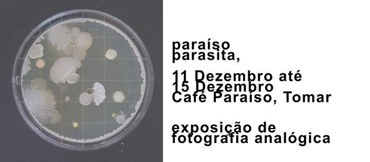Exposição de Fotografia 'paraíso,parasita', 11-15 Dez em Tomar