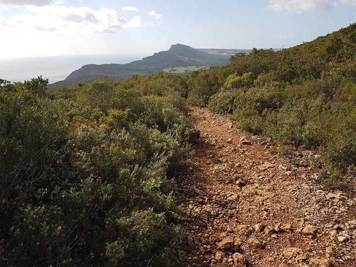 Caminhada na Serra da Arrábida - Formosinho