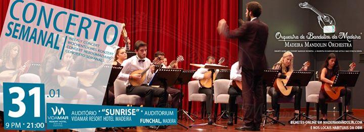 Concerto Semanal OBM | 31.01.2020