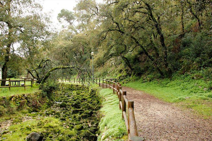 Caminhada de Reis na Serra da Maunça