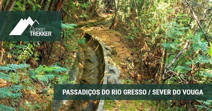 Passadiços do Rio Gresso / Sever do Vouga