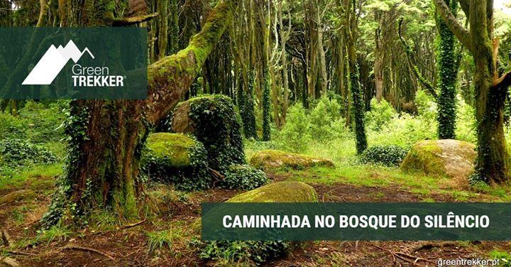 Caminhada no Bosque do Silêncio/Sintra