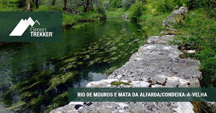 Rio de Mouros e Mata da Alfarda/Condeixa-a-Velha