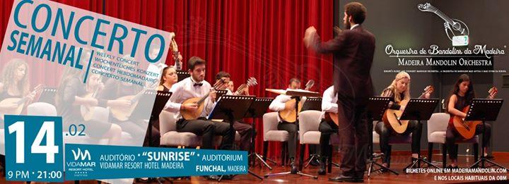 Concerto Semanal OBM | 14.02.2020