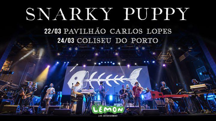 Snarky Puppy | Porto