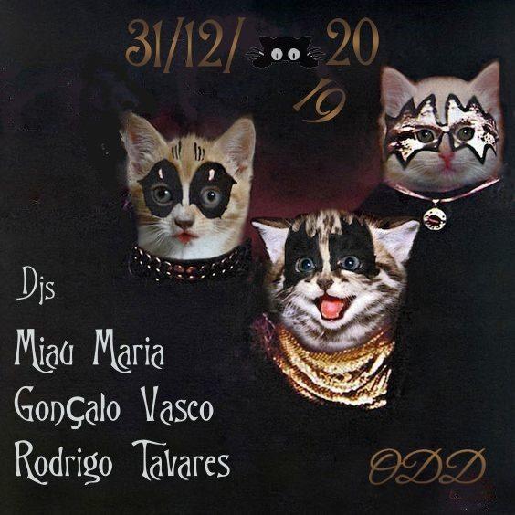 Happy Meow Year with Three Odd Cats
