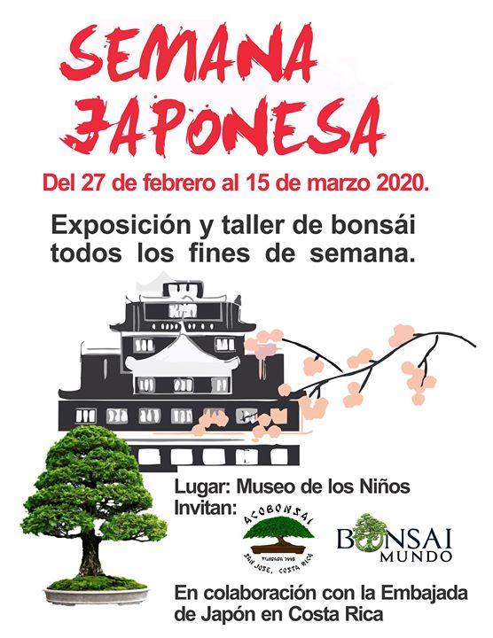 Exposición y Taller de Bonsái. Semana Cultural Japonesa 2020.