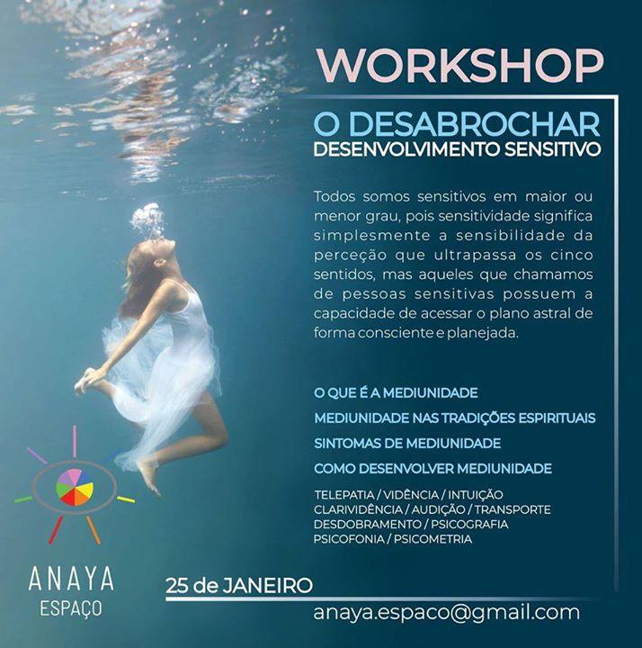 Workshop - Desenvolvimento Sensitivo
