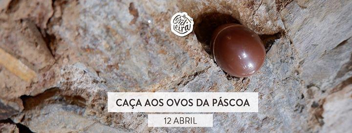 Caça aos Ovos da Páscoa | Easter Egg Hunt