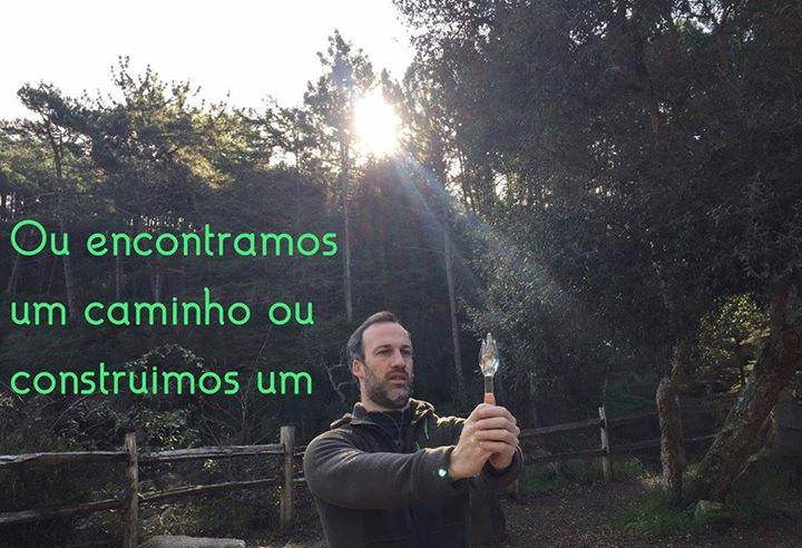 Meditação Ascension- Paulo Guerreiro
